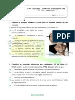 B.2.2 - Ficha de Trabalho - Sistema Nervoso (1)