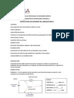 Estructura de informe de primera práctica
