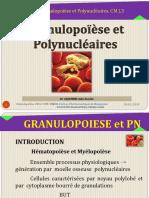 Granulopoïèse Et PN CM L3 2019