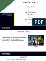 EXPOSICIÓN RAMA LABORAL