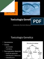 Toxicologia Genetica