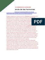 DOCUMENTOS DE LA CUARTA SEMANA