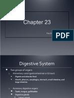 Digestive System_Part 1