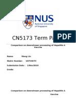 term paper final copy