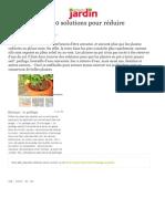 Plante en pot, les solutions pour réduire l'arrosage - Maison Créative