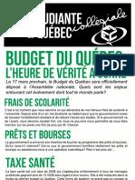 VOIX express pré-budget