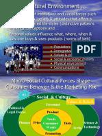 ch03 Soc Cultural Envir 6Sept06 n33 1.1mb