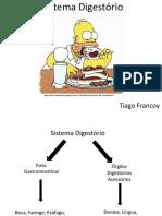 Aula 4 - Sistema Digestório