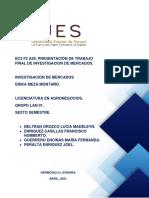 INVESTIGACION DE MERCADOS.