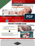 RECIEN NACIDO SANO Y CUIDADOS DELRN y RCPN -ALTAMIRANO