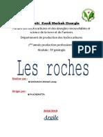 TP-ROCHES-Louay