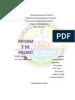 Informe de Pasantia Del Junin