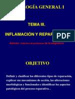 patologia_general_conferencia_6_inflamacion_y_reparacion