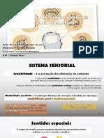 AT - Anatomia do Sistema Sensorial