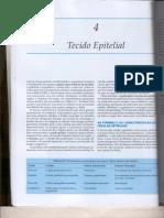 Histologia-Tecido Epitelial