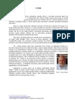seminarski rad - privatizacija