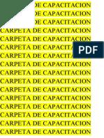 Carpeta de Capacitacion