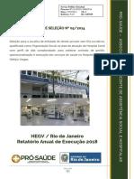 Relatório Anual HEGVRJ 2018