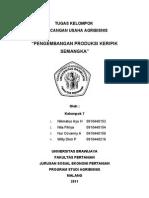 RUA Pengembangan Produksi Keripik Semangka MAKALAH FIX