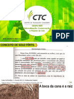 AntonioCelso_Tiete_Sistematizaçao, Conservaçao e Preparo do Solo