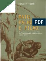 Mato, palhoça e pilão o quilombo, da escravidão às comunidades remanescentes (1532-2004)
