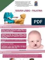 fissuralbiopalatina-cpia-150913194954-lva1-app6892