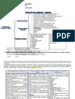 PRINCIPIOS PROCESALES Y SUSTANTIVOS DEL DERECHO LABORAL2021(1) (1)