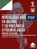 Epidemiologia de mortalidad materna