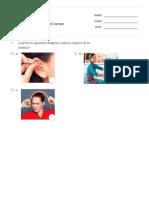 Evaluación 1° básico Ciencias