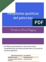 ca_de_pancreas
