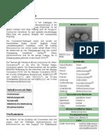 Betacoronavirus