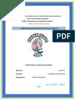 trabajo final pachitea 11111 (1)