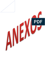 ANEXO OFICIAL