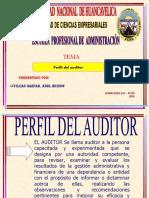 Perfil de Auditor