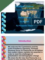 FLEXICURITY Presentation to EU Mission