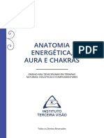 Anatomia Energética - Abordagem Completa (1)