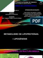 4.4 Metabolismos de Lipoproteinas 1