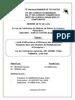 Memoire Audit (Réparé)-Converti (1)