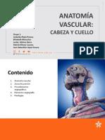 ANATOMÍA VASCULAR CABEZA Y CUELLO - GRUPO 1