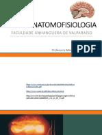 Encontro 8 - Sistema Imunológico, Funções Neurovegetativas, Funções Comportamentais e Motivacionais