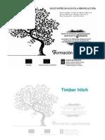 timber hitch.pdf