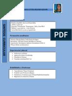 Síntesis Curricular ana PDF