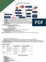 Farmacología Cardiovascular