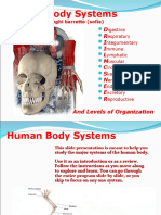 Human Body Systems Final Project 03-04 Draft 5