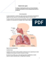 Sistema Respiratório1