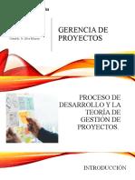 GERENCIA PROYECTOS LECTURA
