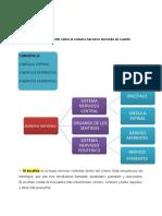 psicologia general tarea 2