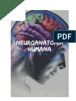 Apostila de Neuroanatomia