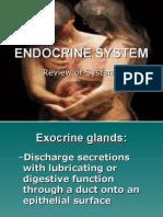 01 Endocrine