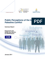 Public Perceptions of the Palestine Israel Conflict [FINAL REPORT January 2011]